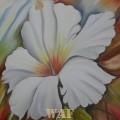 Ibisco Branco Decorativo