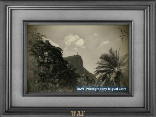 B&W Photography-Miguel Letra