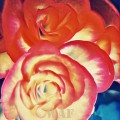 Begonias de fuego
