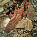 Voluntad temporal... (Collage Mixto)