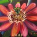 Flor de Grillo