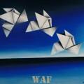 Pintura Origami