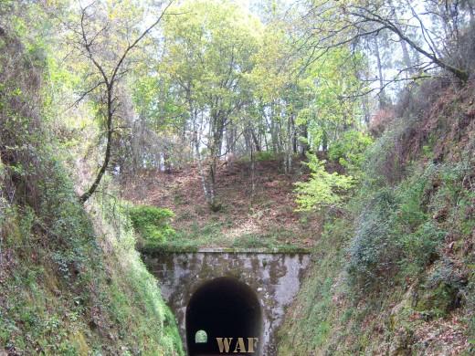 Uma Luz ao fundo do túnel