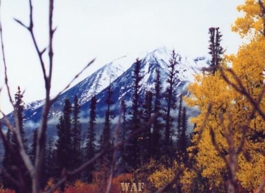 Mount McKinley (2002)