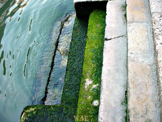 building steps leading into the water in Venice (Italy)
